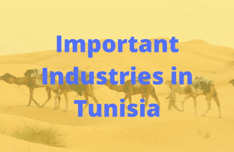 Important Established Industries in Tunisia